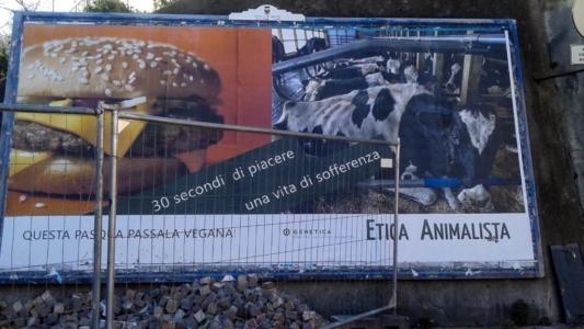 20150328 164654 1024x576 960x300 - TRENTO - AFFISSIONE MANIFESTI 6 X 3 SUL TEMA DEL VEGANISMO dal 23 marzo al 6 aprile 2015. Via Giusti, Piazzetta da Vinci, Viale Degasperi