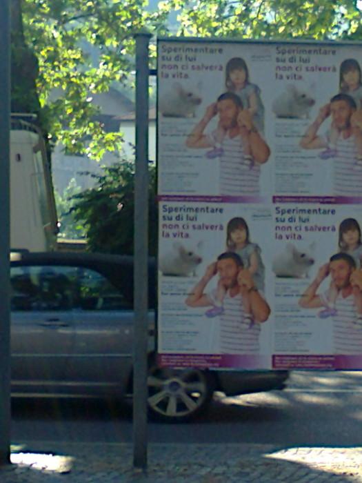 25052012   cena vegan e campagna contro la vivisezione 20120601 1458057134 - 25.05.2012 - CENA VEGAN E CAMPAGNA CONTRO LA VIVISEZIONE - 2012-