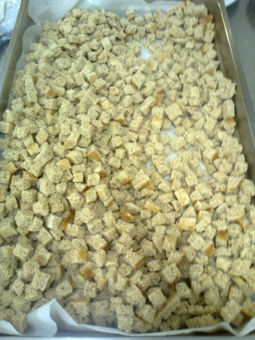 25052012   cena vegan e campagna contro la vivisezione 20120601 2087149969 - 25.05.2012 - CENA VEGAN E CAMPAGNA CONTRO LA VIVISEZIONE