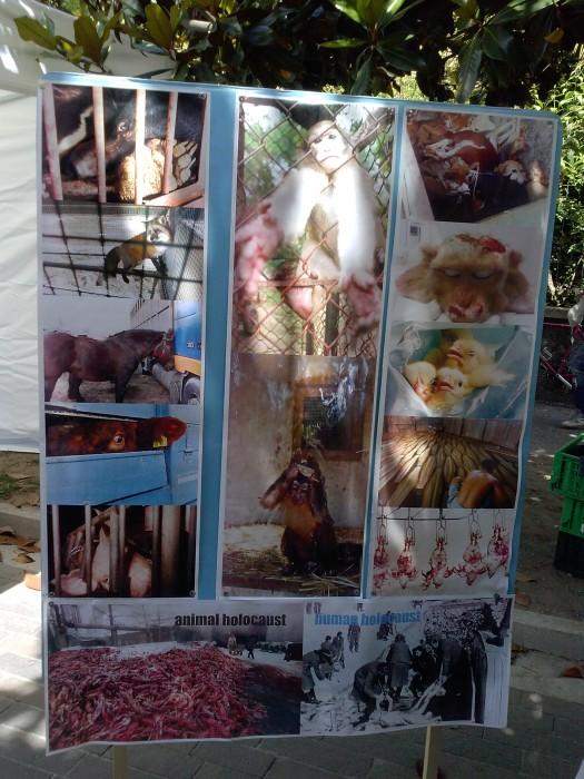 arco 01 06 2014 20140602 1421017778 - 01.06.2014 TAVOLO INFORMATIVO - ARCO TN ALLA FESTA VEG DEGLI ANIMALI