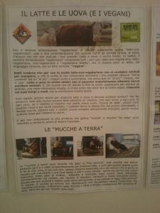 bio vegan fest 2011   bassano del gr 20130212 1002472826 960x300 - BIO VEGAN FEST 2011 - BASSANO DEL GRAPPA - 2011-