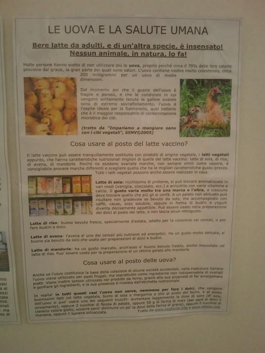 bio vegan fest 2011   bassano del gr 20130212 1004971506 - BIO VEGAN FEST 2011 - BASSANO DEL GRAPPA