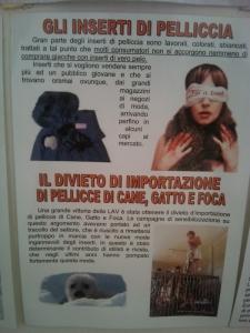 bio vegan fest 2011   bassano del gr 20130212 1327435681 960x300 - BIO VEGAN FEST 2011 - BASSANO DEL GRAPPA - 2011-