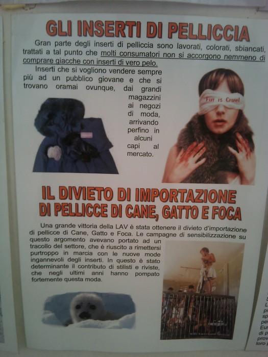 bio vegan fest 2011   bassano del gr 20130212 1327435681 - BIO VEGAN FEST 2011 - BASSANO DEL GRAPPA
