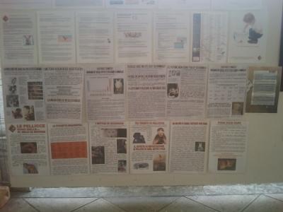 bio vegan fest 2011   bassano del gr 20130212 1439131239 960x300 - BIO VEGAN FEST 2011 - BASSANO DEL GRAPPA - 2011-