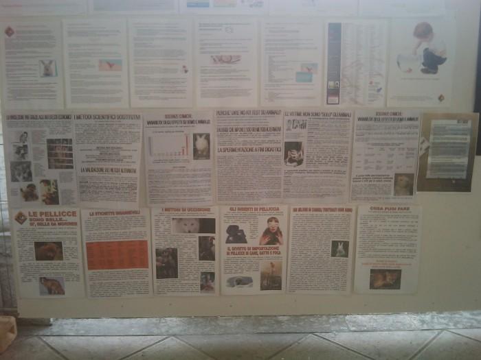 bio vegan fest 2011   bassano del gr 20130212 1439131239 - BIO VEGAN FEST 2011 - BASSANO DEL GRAPPA
