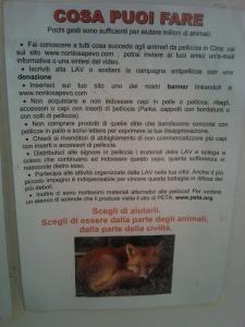 bio vegan fest 2011   bassano del gr 20130212 1523614578 960x300 - BIO VEGAN FEST 2011 - BASSANO DEL GRAPPA - 2011-
