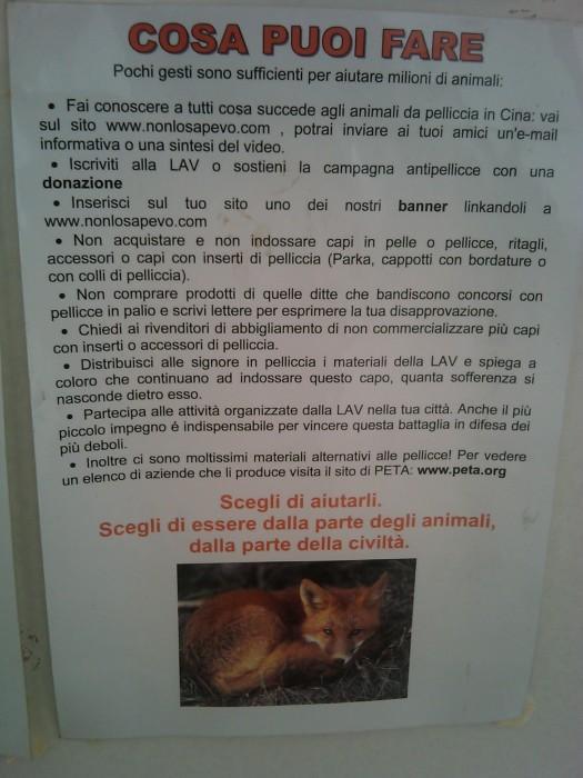 bio vegan fest 2011   bassano del gr 20130212 1523614578 - BIO VEGAN FEST 2011 - BASSANO DEL GRAPPA