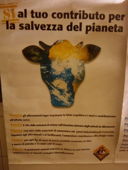 bio vegan fest 2011   bassano del gr 20130212 1819018280 - BIO VEGAN FEST 2011 - BASSANO DEL GRAPPA - 2011-