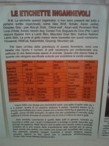 bio vegan fest 2011   bassano del gr 20130212 1827436631 960x300 - BIO VEGAN FEST 2011 - BASSANO DEL GRAPPA
