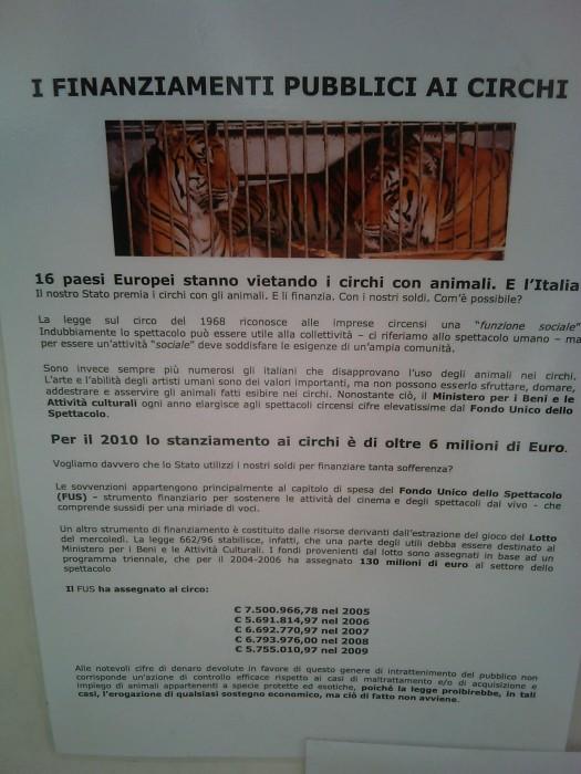 bio vegan fest 2011   bassano del grappa 20110605 1236332473 - BIO VEGAN FEST 2011 - BASSANO DEL GRAPPA