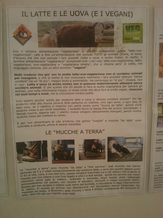 bio vegan fest 2011   bassano del grappa 20110605 1360097311 - BIO VEGAN FEST 2011 - BASSANO DEL GRAPPA - 2011-