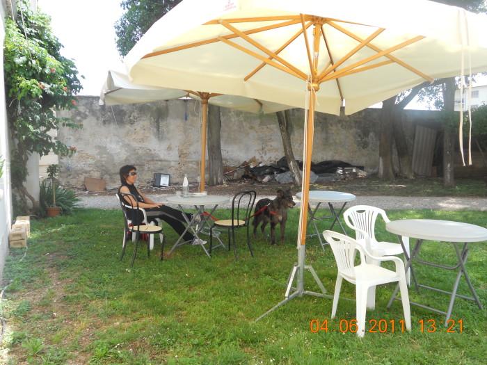 bio vegan fest bassano del gra 20130212 1230885451 - BIO VEGAN FEST 2011 - BASSANO DEL GRAPPA