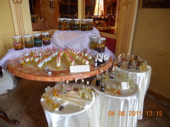bio vegan fest bassano del grappa 20110605 1042233958 - BIO VEGAN FEST 2011 - BASSANO DEL GRAPPA