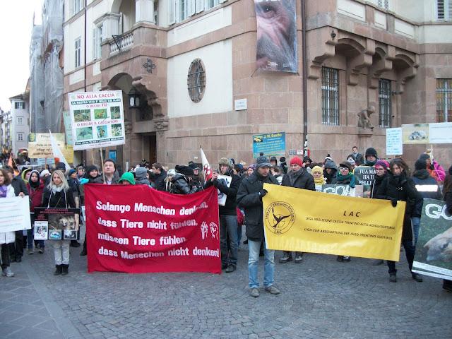 bolzano 04021012 20120205 1252380759 - Bolzano 04.02.2012 manifestazione contro lo sfruttamento degli animali - 2012-