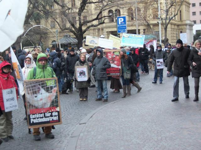 bolzano 04021012 20120205 1772418875 - Bolzano 04.02.2012 manifestazione contro lo sfruttamento degli animali