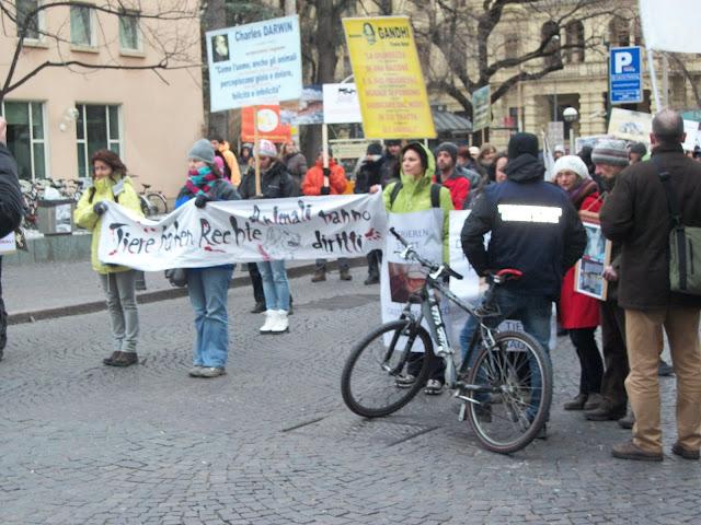 bolzano 04021012 20120205 1989269801 - Bolzano 04.02.2012 manifestazione contro lo sfruttamento degli animali