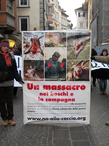 bolzano 0402 20130212 1523032494 - Bolzano 04.02.2012 manifestazione contro lo sfruttamento degli animali - 2012-