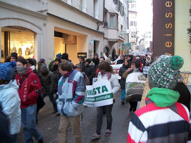 bolzano 0402 20130212 1661263122 - Bolzano 04.02.2012 manifestazione contro lo sfruttamento degli animali