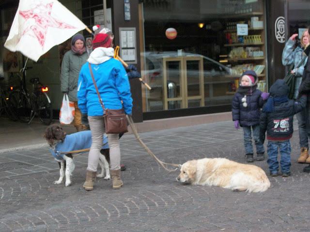 bolzano 0402 20130212 1744663147 - Bolzano 04.02.2012 manifestazione contro lo sfruttamento degli animali