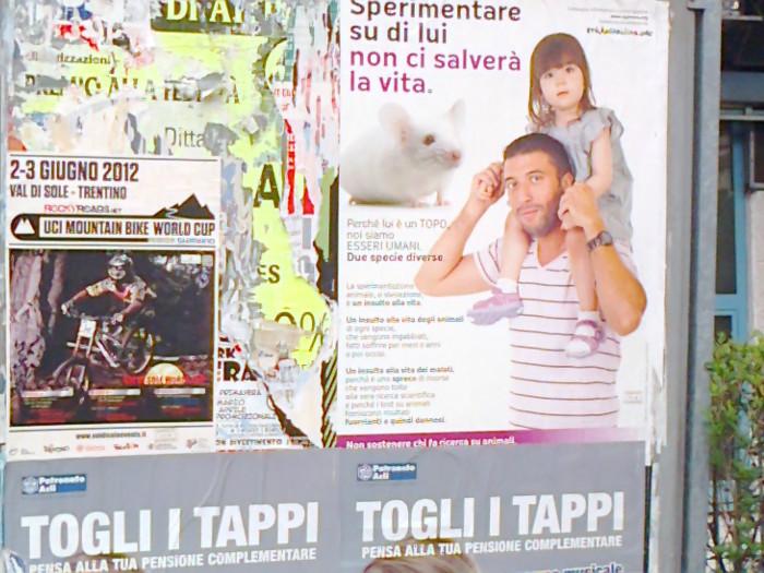 cena vegan e campagna contro la vivisezione 20120609 1990377076 - 25.05.2012 - CENA VEGAN E CAMPAGNA CONTRO LA VIVISEZIONE