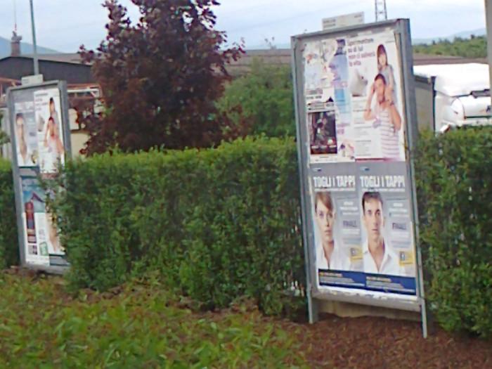 cena vegan e campagna contro la vivisezione 20120609 2000460743 - 25.05.2012 - CENA VEGAN E CAMPAGNA CONTRO LA VIVISEZIONE