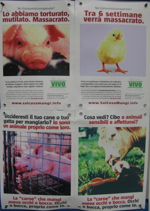 f la cosa giusta ottobre 2012 20121101 1076944978 - MOSTRA SUI MACELLI - FA LA COSA GIUSTA OTTOBRE 2012 - 2012-