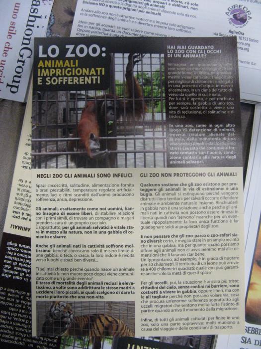 f la cosa giusta ottobre 2012 20121101 1224853732 - MOSTRA SUI MACELLI - FA LA COSA GIUSTA OTTOBRE 2012 - 2012-
