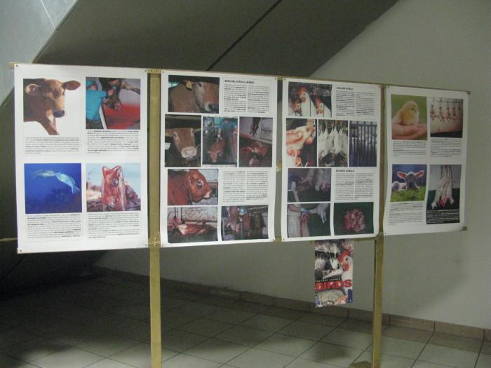 f la cosa giusta ottobre 2012 20121101 1264868737 - MOSTRA SUI MACELLI - FA LA COSA GIUSTA OTTOBRE 2012 - 2012-