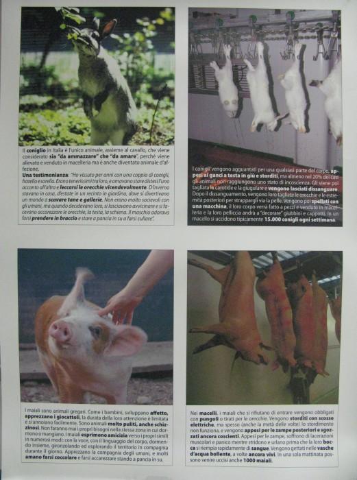 f la cosa giusta ottobre 2012 20121101 1390928713 - MOSTRA SUI MACELLI - FA LA COSA GIUSTA OTTOBRE 2012 - 2012-