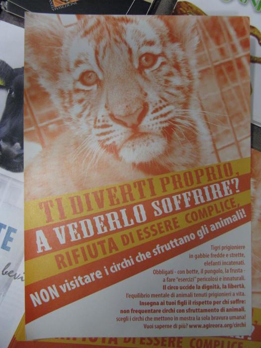 f la cosa giusta ottobre 2012 20121101 1409804643 - MOSTRA SUI MACELLI - FA LA COSA GIUSTA OTTOBRE 2012 - 2012-
