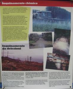 f la cosa giusta ottobre 2012 20121101 1665518824 960x300 - MOSTRA SUI MACELLI - FA LA COSA GIUSTA OTTOBRE 2012 - 2012-