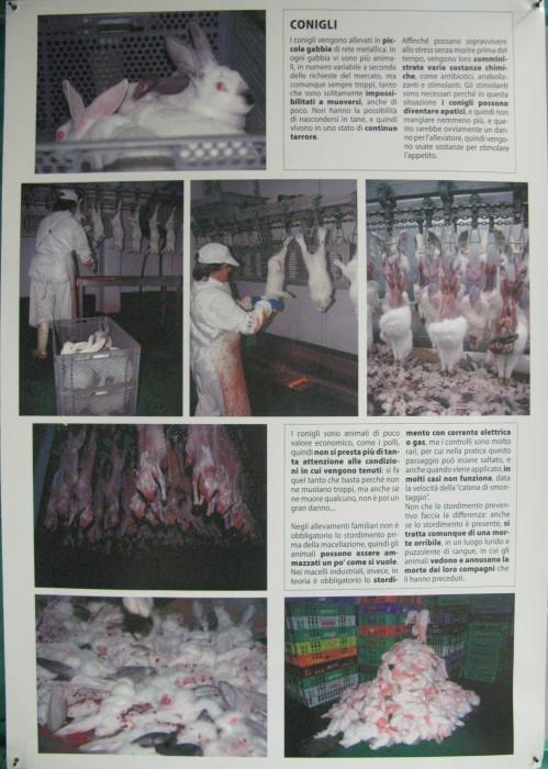 f la cosa giusta ottobre 2012 20121101 2019855770 - MOSTRA SUI MACELLI - FA LA COSA GIUSTA OTTOBRE 2012 - 2012-