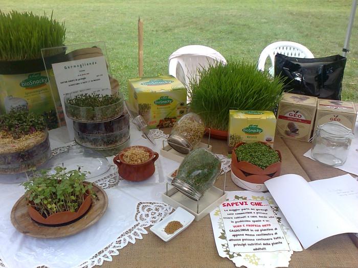 festa delle associaz 20130212 1179401617 - 29.07.2012 - FESTA DELLE ASSOCIAZIONI - 7 LARICI - COREDO TN