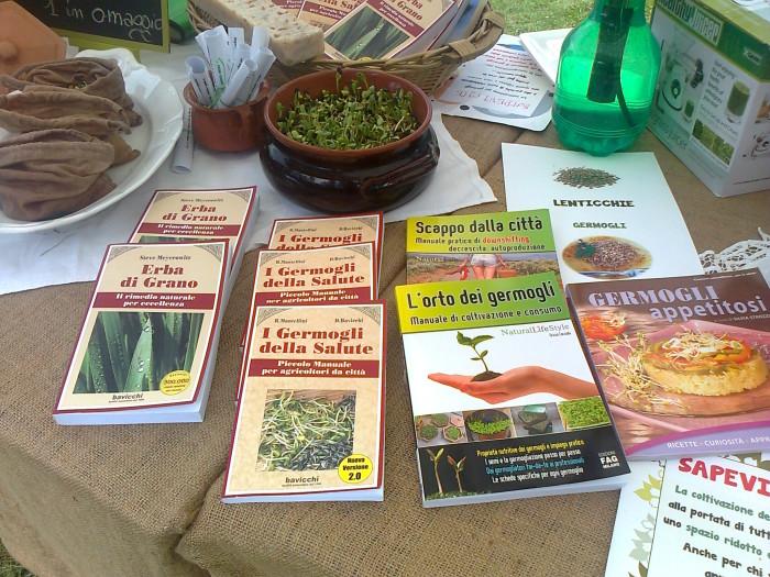 festa delle associaz 20130212 1891193580 - 29.07.2012 - FESTA DELLE ASSOCIAZIONI - 7 LARICI - COREDO TN