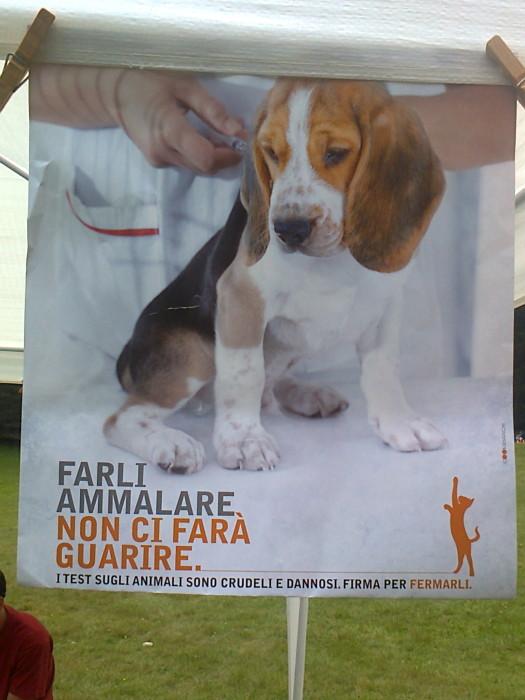 festa delle associazioni 20120802 1023924027 - 29.07.2012 - FESTA DELLE ASSOCIAZIONI - 7 LARICI - COREDO TN