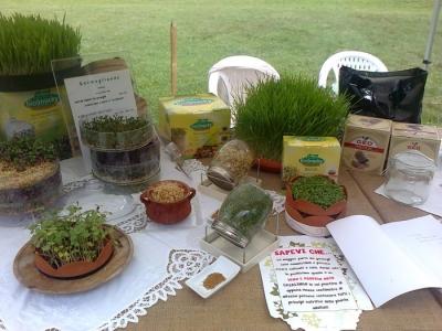festa delle associazioni 20120802 1068418410 960x300 - 29.07.2012 - FESTA DELLE ASSOCIAZIONI - 7 LARICI - COREDO TN