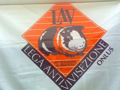 festa delle associazioni 20120802 1163826230 960x300 - 29.07.2012 - FESTA DELLE ASSOCIAZIONI - 7 LARICI - COREDO TN