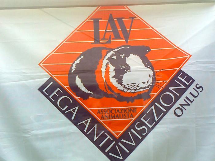 festa delle associazioni 20120802 1163826230 - 29.07.2012 - FESTA DELLE ASSOCIAZIONI - 7 LARICI - COREDO TN