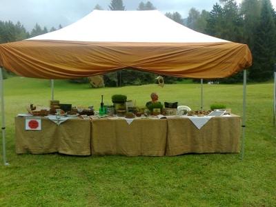 festa delle associazioni 20120802 1947582814 960x300 - 29.07.2012 - FESTA DELLE ASSOCIAZIONI - 7 LARICI - COREDO TN