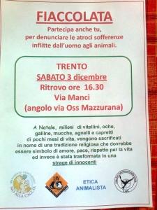 fiaccolata per gli animali 20111204 2086218817 960x300 - 03 dicembre 2011 Trento fiaccolata per denunciare lo sterminio degli animali nel periodo natalizio (e non solo!) - 2011-