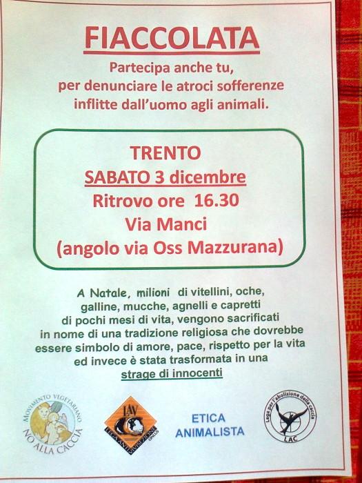 fiaccolata per gli animali 20111204 2086218817 - 03 dicembre 2011 Trento fiaccolata per denunciare lo sterminio degli animali nel periodo natalizio (e non solo!)