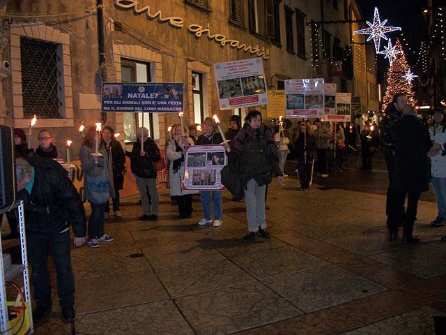 fiaccolata per gli animali 20111210 1340246350 - 03 dicembre 2011 Trento fiaccolata per denunciare lo sterminio degli animali nel periodo natalizio (e non solo!) - 2011-