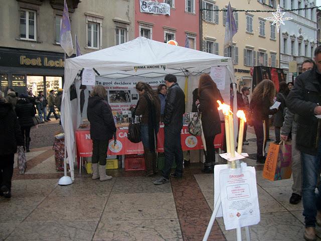 fiaccolata per gli animali 20111210 1430357688 - 03 dicembre 2011 Trento fiaccolata per denunciare lo sterminio degli animali nel periodo natalizio (e non solo!) - 2011-