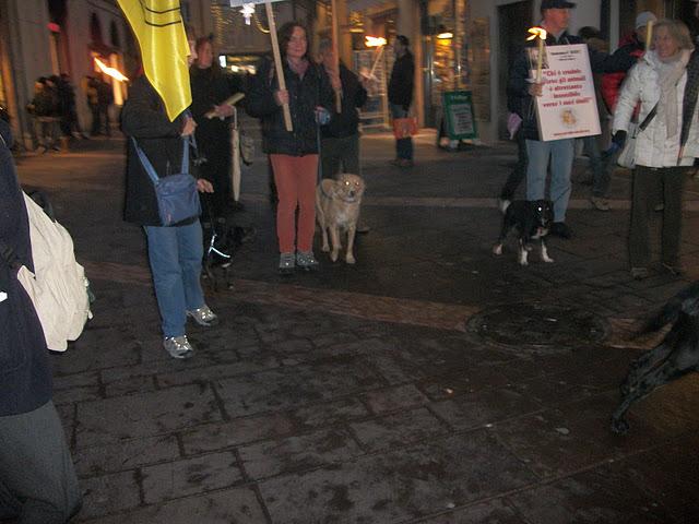fiaccolata per gli animali 20111210 1595949729 - 03 dicembre 2011 Trento fiaccolata per denunciare lo sterminio degli animali nel periodo natalizio (e non solo!) - 2011-
