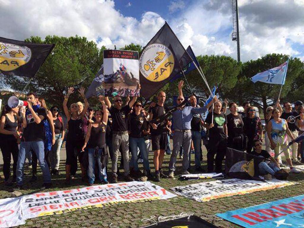 foto palio - Manifestazione contro il Palio di Siena - 16.08.2015