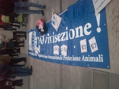 img 1672 20110306 1439362234 960x300 - MANIFESTAZIONE CONTRO LA VIVISEZIONE - MILANO 5 marzo 2011