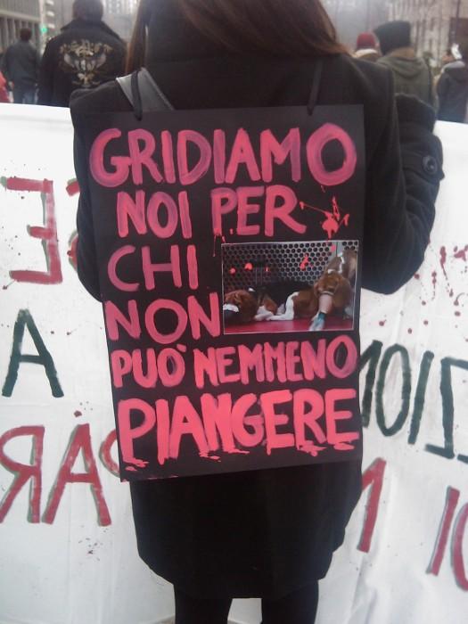 img 1700 20110306 1468675014 - MANIFESTAZIONE CONTRO LA VIVISEZIONE - MILANO 5 marzo 2011