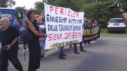 immagini e video 2015 467 1024x576 960x300 - Manifestazione contro il Palio di Siena - 16.08.2015
