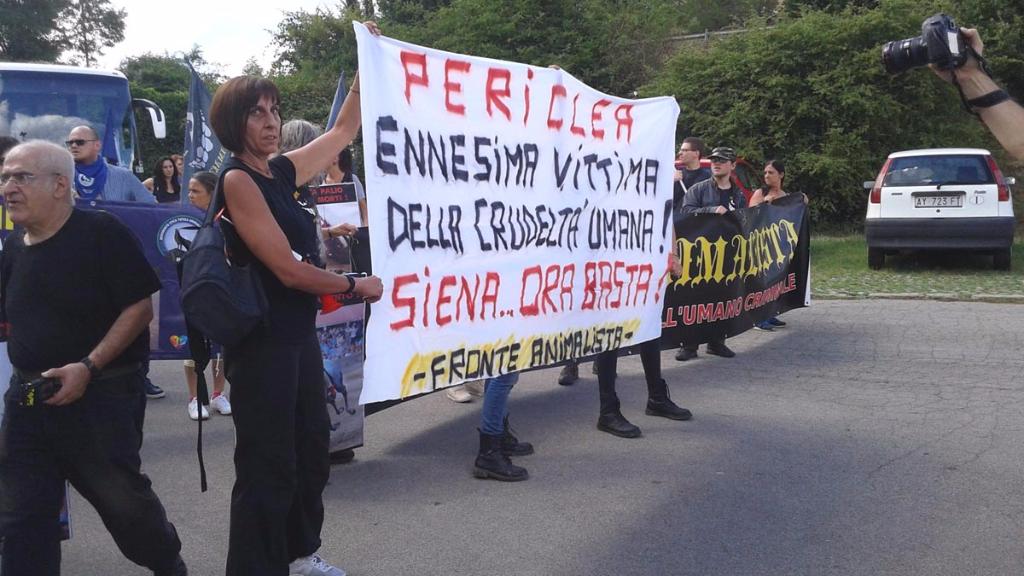 immagini e video 2015 467 - Manifestazione contro il Palio di Siena - 16.08.2015